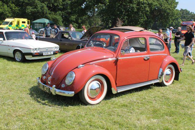 Volkswagen-Beetle-USL-143Volkswagen-Beetle.jpg